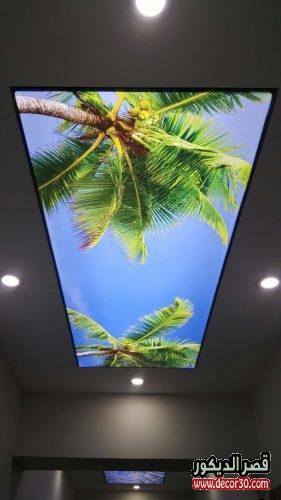 اسقف جبس للصالات