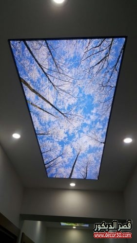 اسقف جبس للصالات الطويله