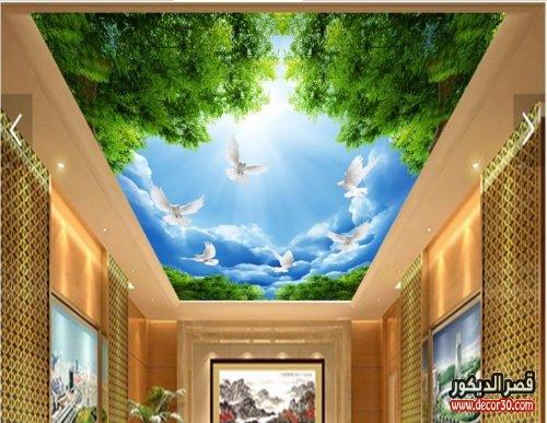 ورق جدران للاسقف بتصاميم مثيرة تسرق النظر